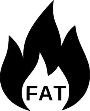 bester fatburner auf dem markt